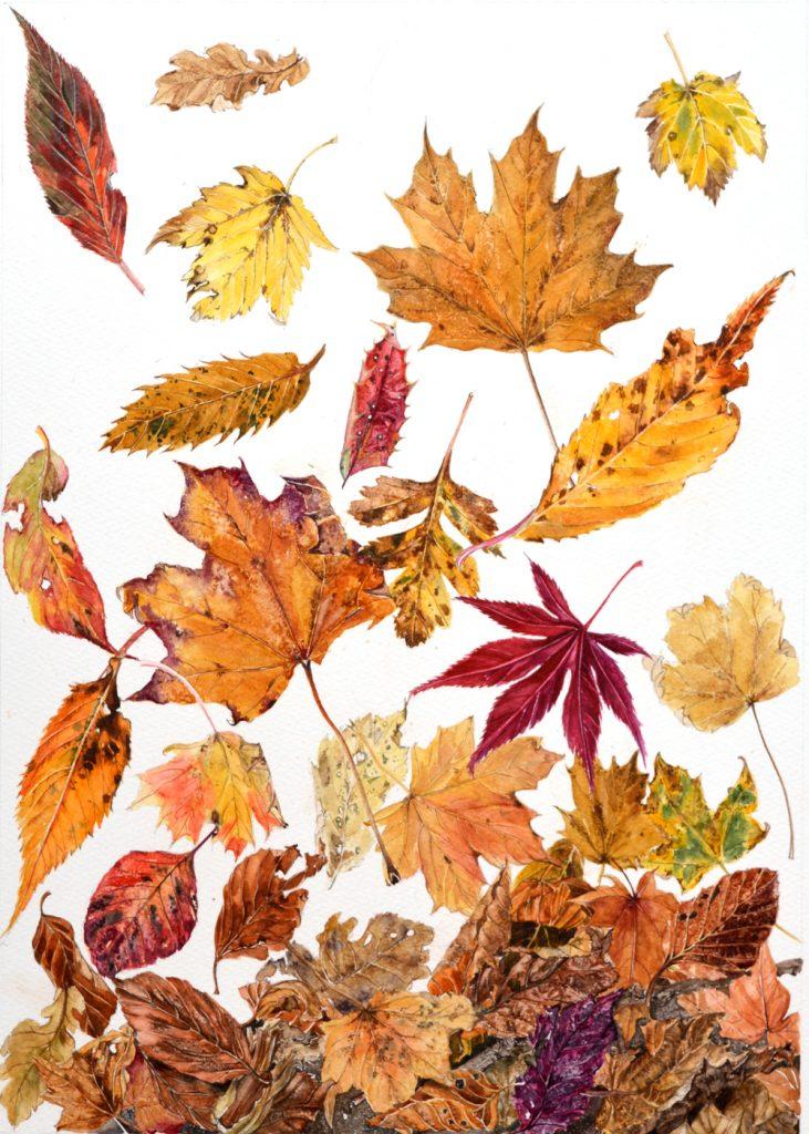 Autumn Leaves, Lynda Bird Clark
