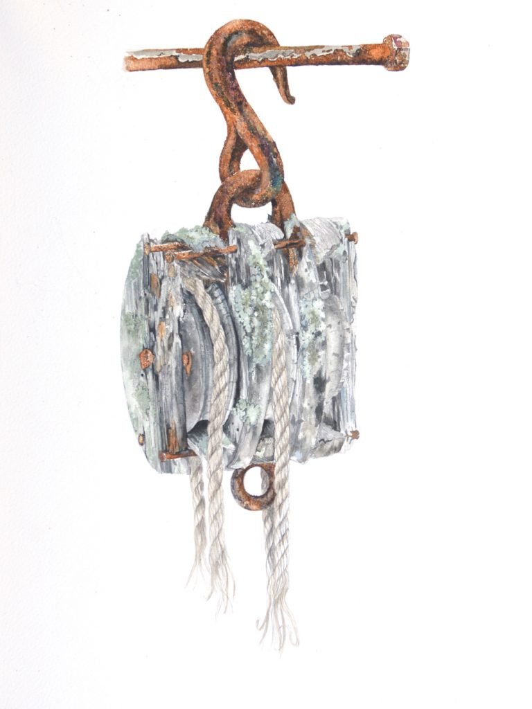 Block and Tackle, Lynda Clark, Artist