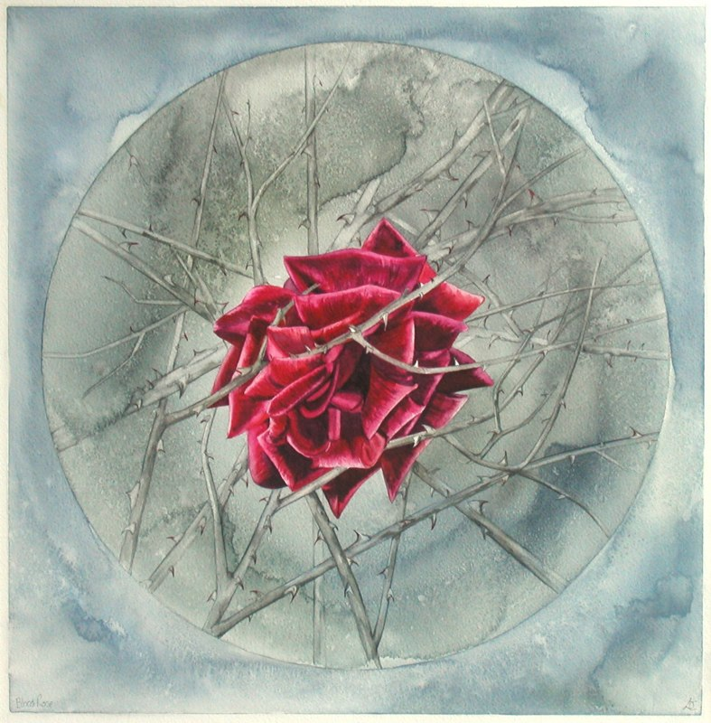 Blood Rose 40 x 41cms, Lynda Bird Clark