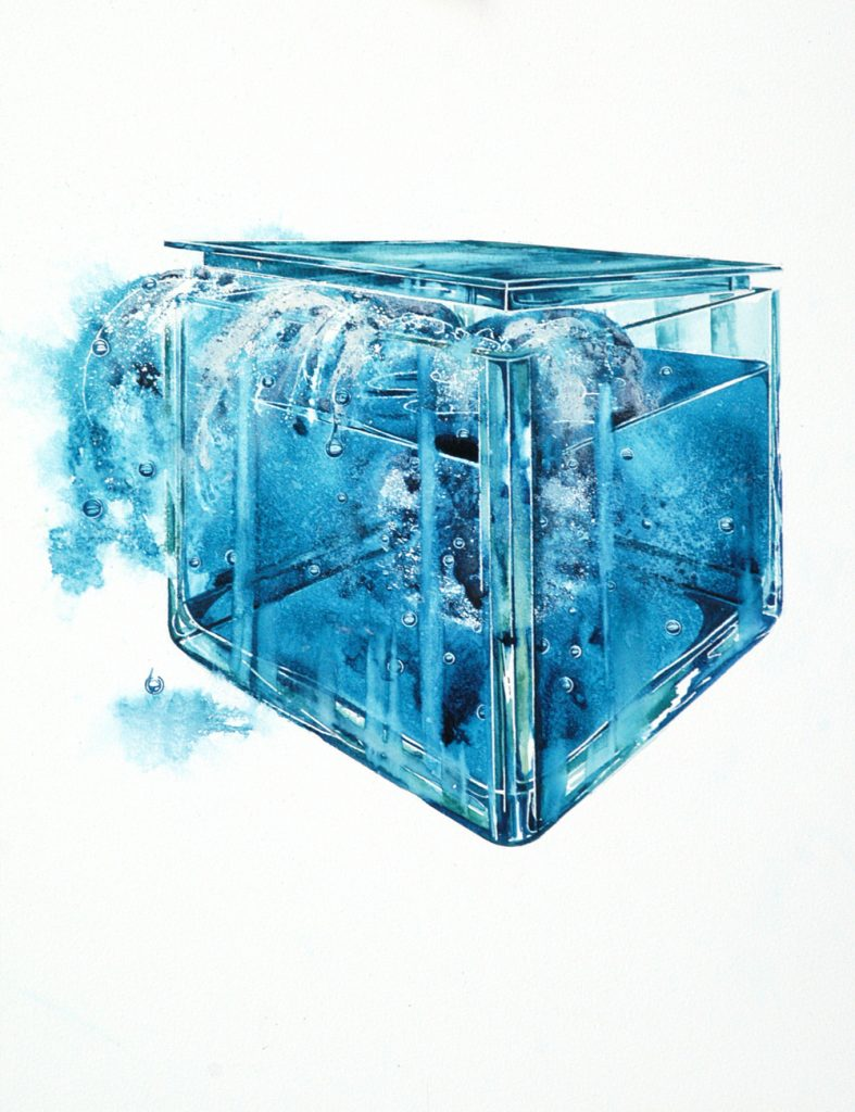 Bluebox 3, Lynda Clark, Artist