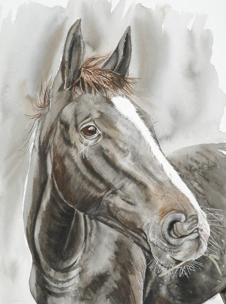 Bugue 29 x 39, Lynda Clark, Artist