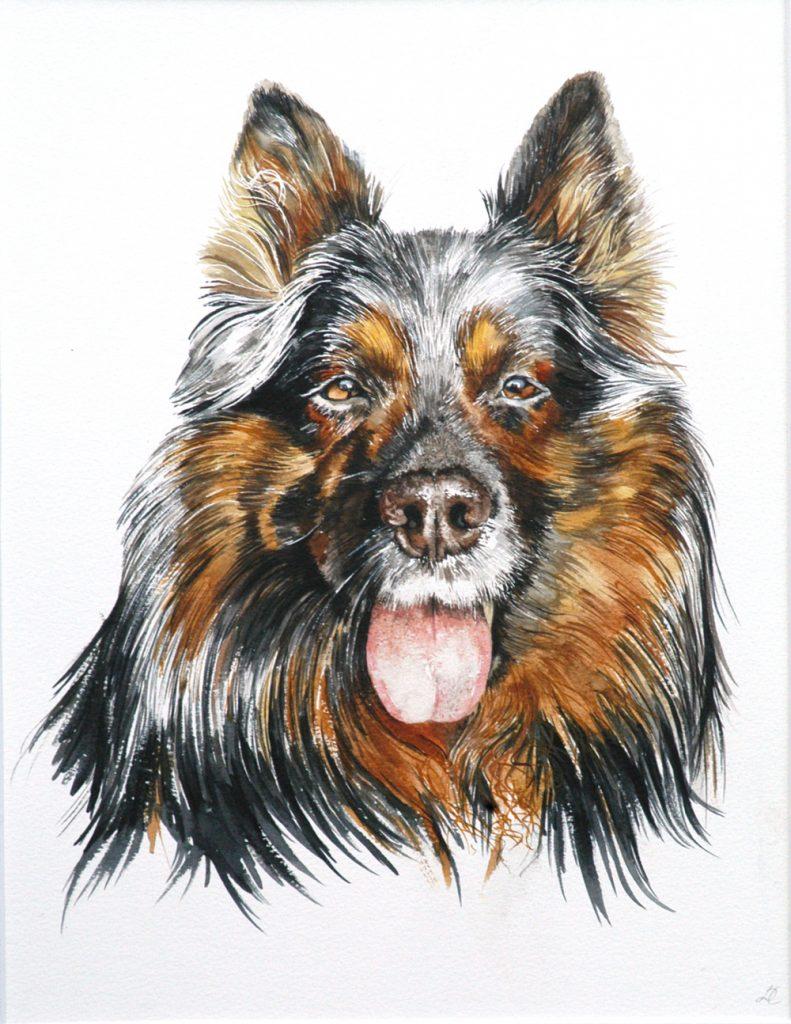 Dagma's dog, Lynda Clark, Artist