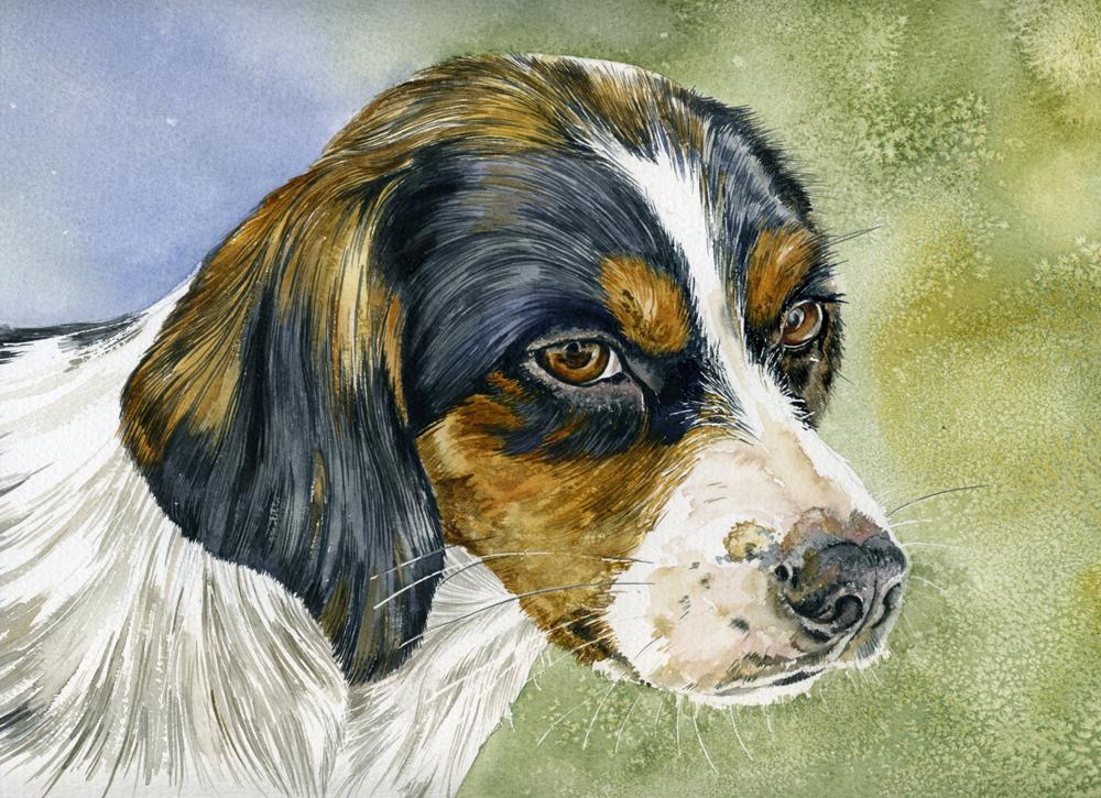 Dollie, Lynda Clark, Artist