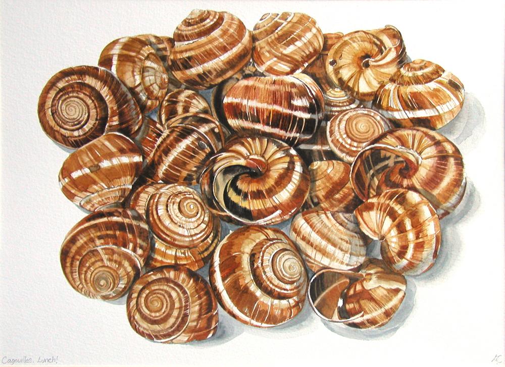 Escargot, Lynda Clark, Artist