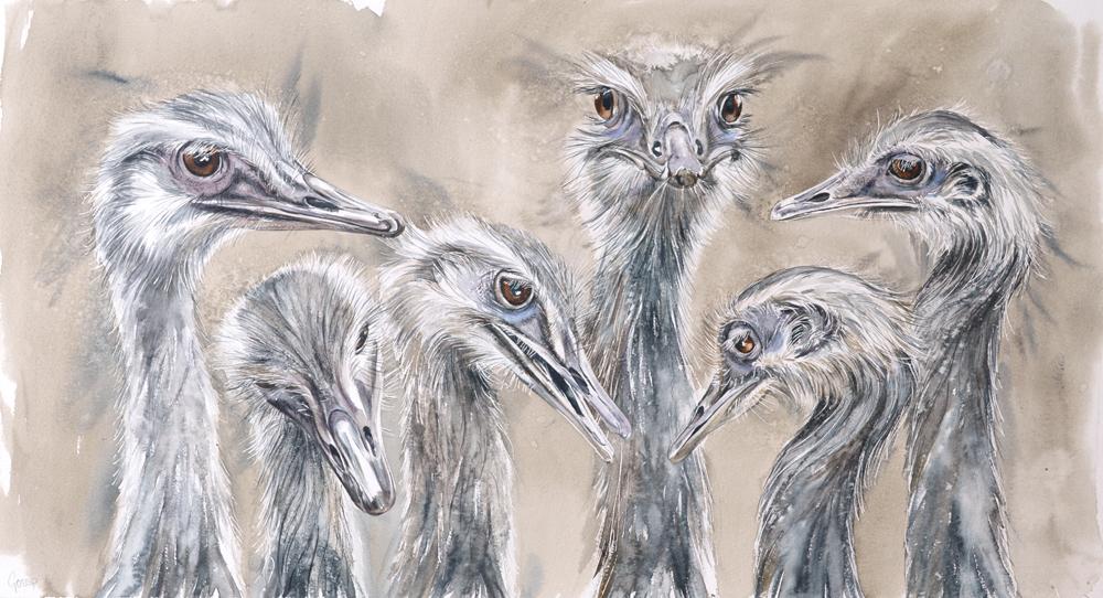 Gossip, Lynda Clark, Artist