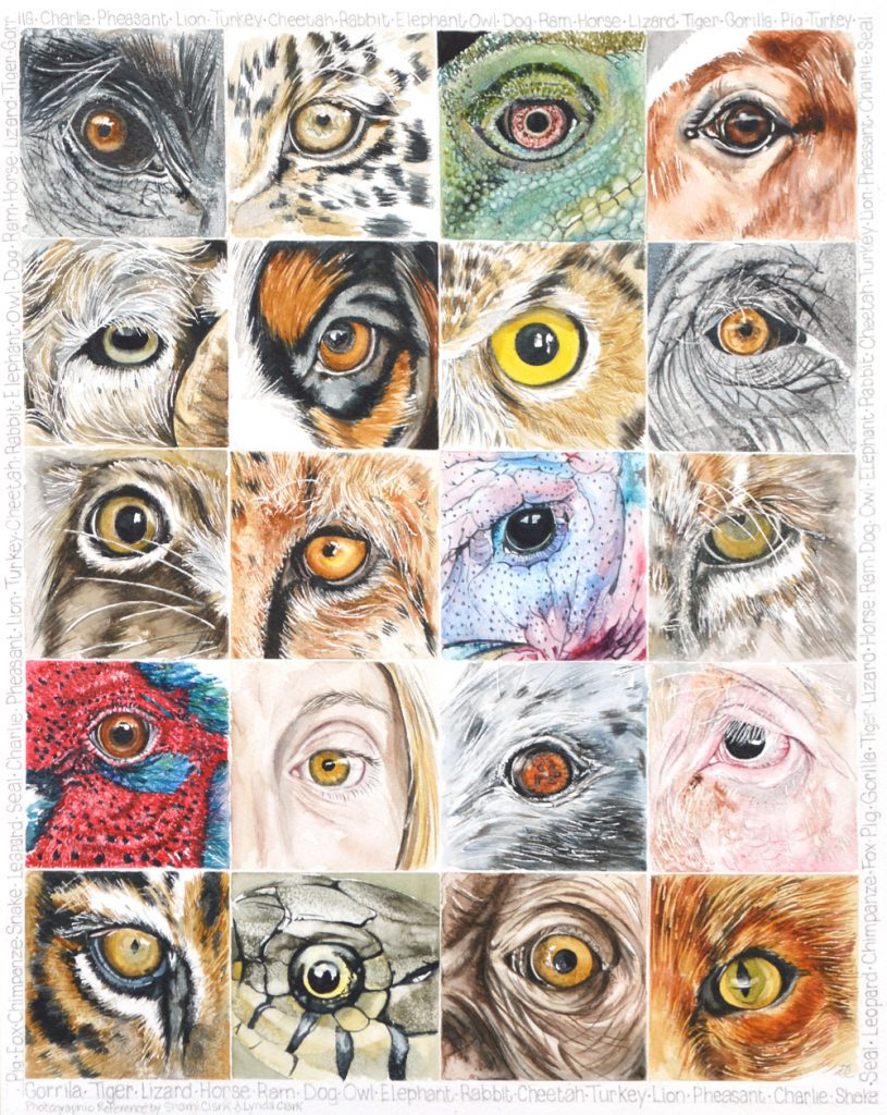 It's in the Eyes, Lynda Bird Clark