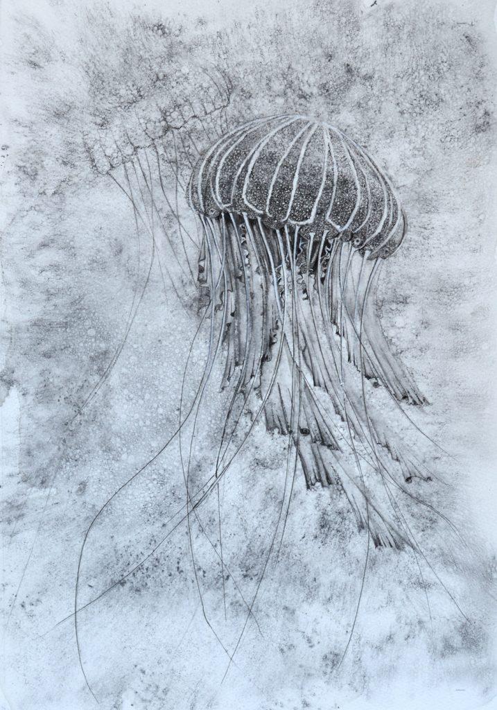 Jellybaby, Lynda Bird Clark