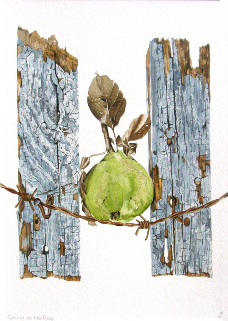 On the Fence, Lynda Clark, Artist