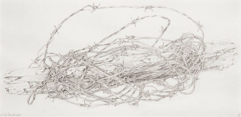 Post & Wire 51.5 x 25.5cms, Lynda Bird Clark
