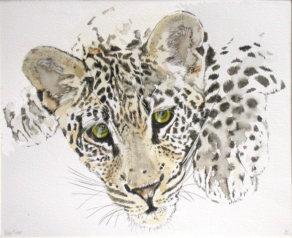 Paper Tiger, Lynda Clark, Artist