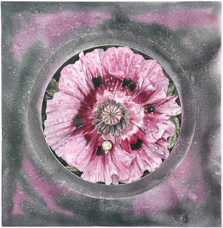 Pink Poppy 45 x 46cms, Lynda Bird Clark