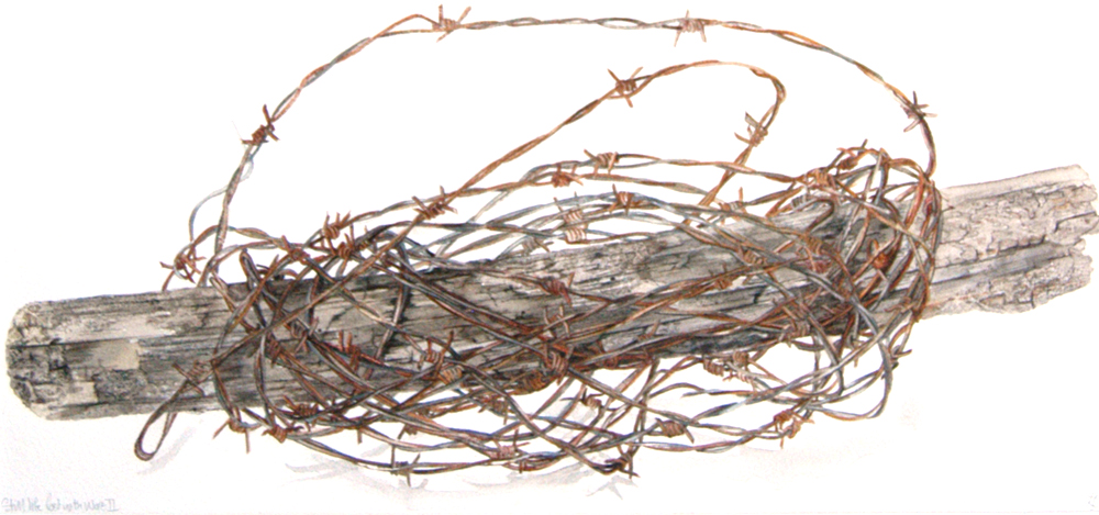 Post and Wire, Lynda Clark, Artist