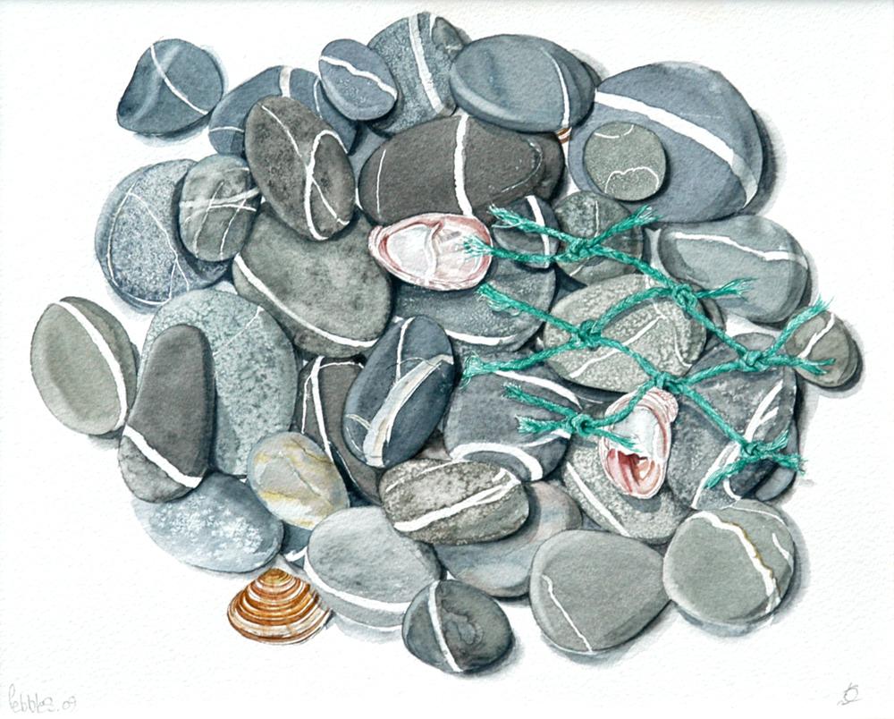 Stones with Net, Lynda Clark, Artist