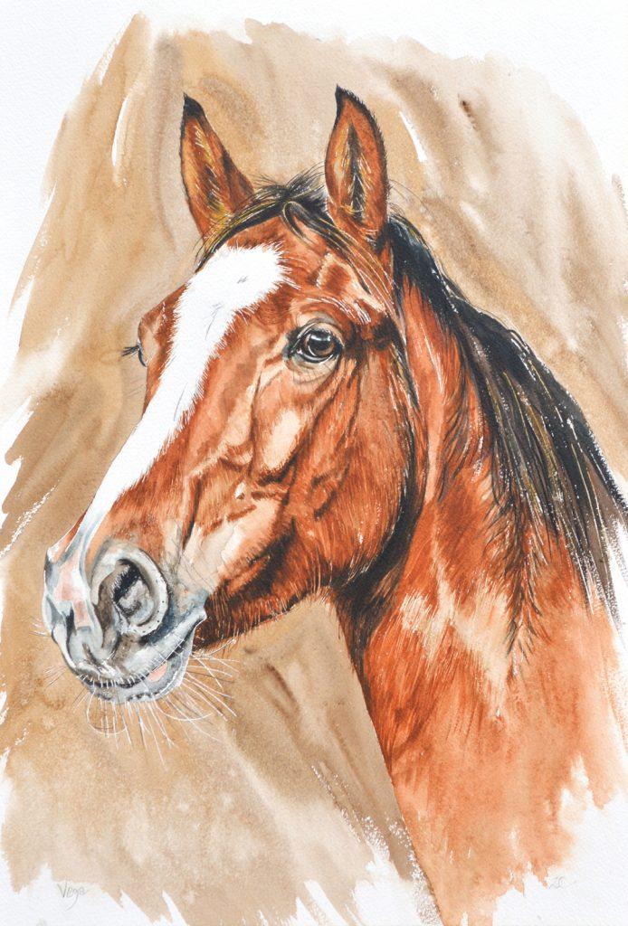 Vega1, Lynda Clark, Artist