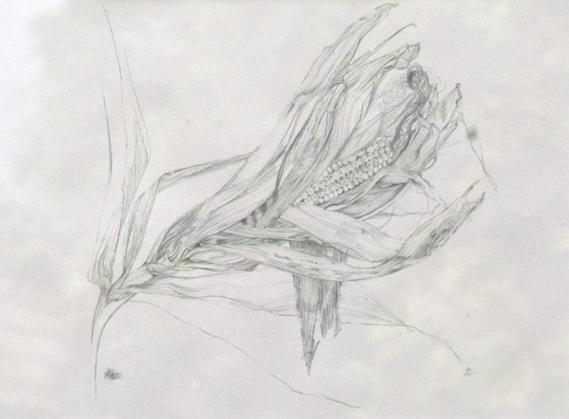 Maze, Lynda Bird Clark
